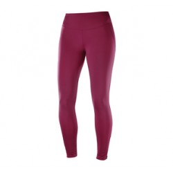Salomon Collant Agile Warm tight beet red Femme