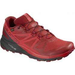 Salomon Sense Ride GTX Homme