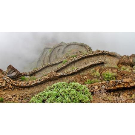 Séjour trail Cap Vert