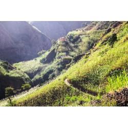 Voyage trail running Cap Vert